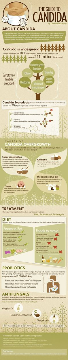 Hypothyroidism Diet Recipes - An infographic showing the causes, symptoms, diagnosis and treatment of Candida. Learn how to beat your Candida by using antifungals and probiotics. - Get the Entire Hypothyroidism Revolution System Today Hypothyroidism Diet, Gut Health, Health And Nutrition, Nutrition Classes, Nutrition Tracker, Nutrition Store, Nutrition Education, Health And Wellness, Up Dos