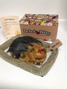 Perfect Petzzz Huggable Breathing Yorkie Puppy Dog #PerfectPetzzz