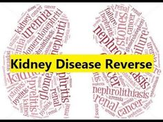 Kidney Disease Reverse - Recovering from Chronic Kidney Disease