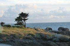 TREGUNC .... Finistère à découvrir encore!