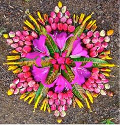 Magnifique composition de feuilles, fleurs et bourgeons / Beautiful composition of leaves,flowers and buds....