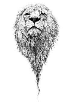 Resultado de imagen de tumblr drawing lion