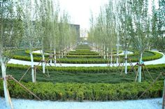 peter walker infinite finite garden - Google Search