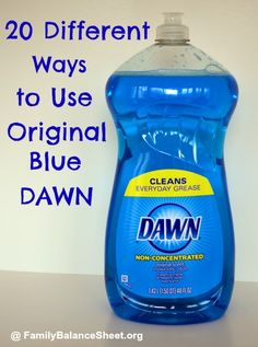 Did you know Original Dawn Blue isn't just a dishwashing liquid? It can also be used to control dog fleas, clean soap scum in your bathroom,  remove spots on your laundry, and make amazing bubbles. And that's just a few...and they cost much less than the store bought version.