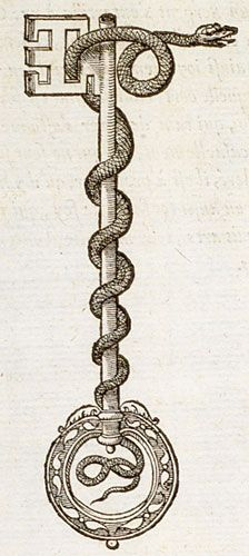 Pictura of Paradin, Claude: Devises heroïques (1557): Scilicet is superis labor est.