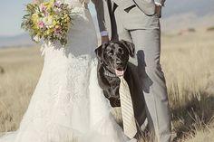 Photo by @lonemanphoto / Chico Hot Springs, Montana Wedding