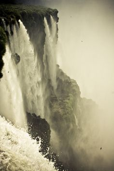 Untitled, part of the incredibly amazing Devil's Throat area of Iguazu Falls in Argentina (2010). Photographed by Kelly Gibbs. via kellinasf on flickr