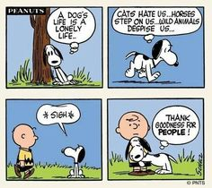 #thepeanuts #pnts #peanuts #schulz #snoopy #charliebrown