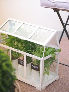 Little Greenhouse from Pentik