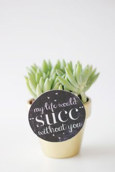MY LIFE WOULD SUCK WITHOUT YOU - succulent valentine