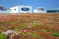 Ford Rouge Center Landscape - Поиск в Google
