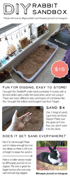 Great for bunnies that like to dig carpet or participate in … Rabbit digging box! Great for bunnies that like to dig carpet or participate in other sorts of bunstruction. Easy to store and fun for buns! DIY sandbox and rabbit toy Bunny Cages, Rabbit Cages, Rabbit Toys, Pet Rabbit, Rabbit Cage Diy, Diy Bunny Cage, Indoor Rabbit Cage, Pet Bunny Rabbits, Diy Bunny Hutch