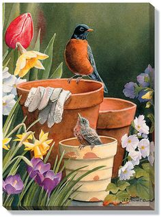 In Susan Bourdet's wrapped canvas print a pair of Robins discover some empty pots in a garden.