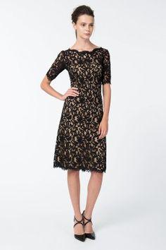 Short Sleeve A-Line Lace Dress in Black / Nude - New Arrivals   Tadashi Shoji