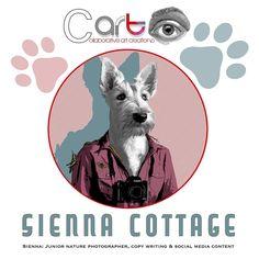 I Designed this for our self catering cottage. #digitaldesign #art #illustrationart #signage #scottishterrier #pets #dogs