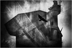 Decay With Elements de Lucian Olteanu sur Art Limited
