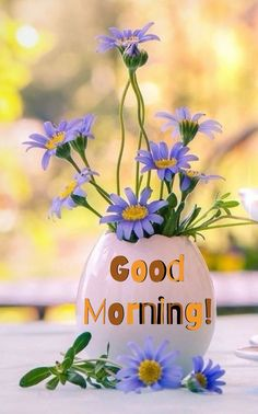 Beautiful Flowers Pictures, Flower Pictures, Love Flowers, Cute Good Morning, Good Morning Flowers, Morning Pictures, Good Morning Images, Best Background Images, Bloom Where You Are Planted