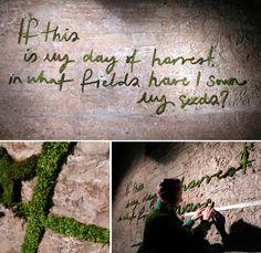 Moss graffiti, it's beautiful!