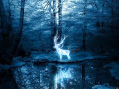 Image discovered by Harry Potter. Find images and videos about blue, harry potter and forest on We Heart It - the app to get lost in what you love. Winter Forest, Snowy Forest, Blue Forest, Winter Trees, Night Forest, Magical Forest, Expecto Patronum Harry Potter, Looks Dark, Les Gifs