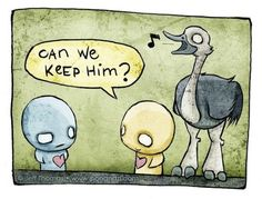 Pon&Zi - Ostrich by Jeff Thomas
