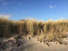 Strand, Sonne und Meer - Die Insel Rügen ist immer eine Reise wert...:-) #reisen #urlaub #ostsee #rügen Strand, Country Roads, Island, Vacation, Travel