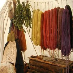 Plant dyeing the viking way