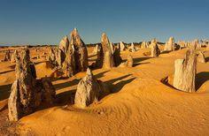 The Pinnacles Desert Nambung National Park Western Australia Perth Western Australia, Perth Australia, Australia Travel, Vacation Trips, Day Trips, Pinnacles Desert, Australia Occidental, Nambung National Park, Excursion