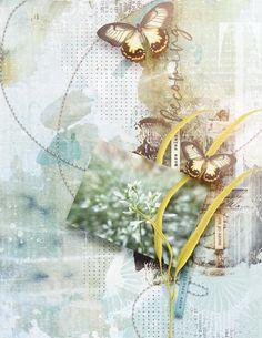 Site Design, View Photos, Digital Scrapbooking, Gallery, Artwork, Image, Work Of Art, Website Designs, Yard Design