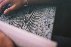 worm Blog, Photography, Photograph, Fotografie, Blogging, Photoshoot, Fotografia