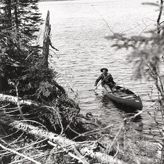 """""""Out of the Wilderness""""?  PBS film about a man who lived alone in the Alaskan wilderness for 30 years."""
