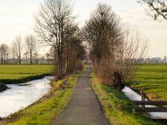 Het Groene Hart, Zuid-Holland, Netherlands