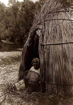Construction of a Tule Indian Shelter. Photo by Edward S. Curtis. The picture presents a picture of a woman buiding her cane shelter.