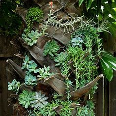 Wow, any of you lucky enough to live in the south, this is an awesome idea for a fan palms trunk!