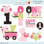 Pink First Birthday Girl Owls Clipart