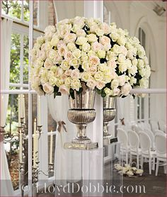 what a beautiful display cream roses with a pinch of color in the center