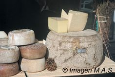 Catalan cheese