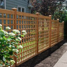 Building a Lattice Trellis in Your Garden {Expert Advice} for building a {Lattice Trellis} in your garden!{Expert Advice} for building a {Lattice Trellis} in your garden!for Building a Lattice Trellis in Your Garden {Expert Advice} for building a {Lattice Wire Trellis, Trellis Fence, Garden Trellis, Garden Fencing, Bamboo Fence, Fence Gate, Front Yard Fence, Diy Fence, Fence Landscaping
