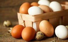 Pastured eggs are showing up on supermarket shelves and some are even more expensive than organic eggs. The only difference I've noticed is that the yolks are darker and creamier than farmed eggs. Are they worth the added cost? Backyard Poultry, Chickens Backyard, Agriculture Bio, B12 Deficiency, Organic Eggs, Eating Eggs, Chicken Eggs, Farm Chicken, Fresh Chicken