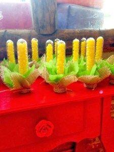 festas Pregnancy j shaped pregnancy pillow Cactus Plants, Baby Shower, Shapes, Birthday, Party, Diy, Chico Bento, Junho, Lucas 1