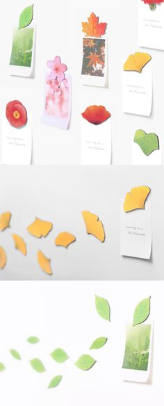 I can always hang my notes and remember them well with the Leaf Magnet Set. The magnets replicate the look of beautiful leaves and flowers, and always can remind me what I need to do next! They also make wonderful decoration anywhere!