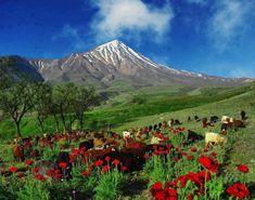 Kurdistan Garden of Eden