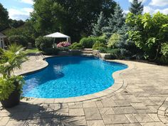 Backyard makeover with addition of a pool including a waterfall, surrounding stone work and design and planting of garden beds. Swimming Pool Pictures, Swimming Pools, Waterfall Features, Custom Pools, Backyard Makeover, Stone Work, Pool Houses, Pool Designs, Garden Beds