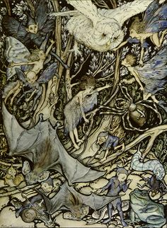 Act 2 scene 2 Another Part of the Wood A Midsummer Night's Dream Arthur Rackham at Art Passions