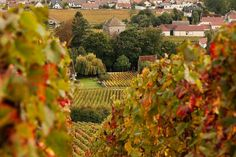 Your Guide to France in September. What to pack, see and weather