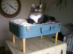 Cat Bed - Recycling chic