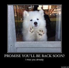 Promise you'll be back soon?