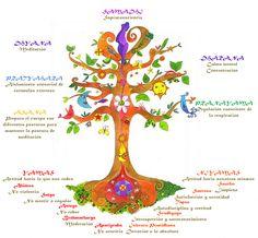 Las 8 ramas de Ashtanga Yoga.- Según las doctrinas hindúes en las que se asienta el yoga, el ser humano es un alma encerrada en un cuerpo. Y para llevar una vida plena, es preciso satisfacer tres necesidades: la necesidad física: salud y actividad, la necesidad psicológica; conocimiento y poder, y la necesidad espiritual; felicidad y paz. Cuando las tres se hallan presentes, hay armonía. Así pues el yoga es una sabiduría práctica que abarca cada aspecto del ser de una persona. Enseñando al…