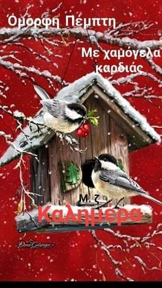 Greek Christmas, Merry Christmas Gif, Christmas Wishes, Christmas Art, Good Morning, Bird, Outdoor Decor, Gifts, Noel