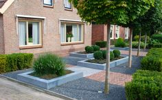 Voortuinen zijn er in verschillen stijlen. Wat is jouw favoriet voortuin? Doe tuininspiratie op aan de hand van duizenden foto's en honderden blogs; bekijk TuinTuin.nl!