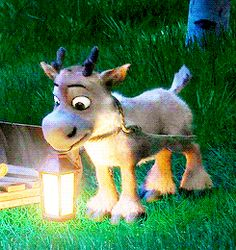 Is this baby Sven in Tangled?? If so god bless whoever made this!!